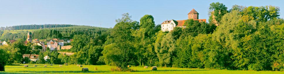 Blick über die Auen der Sinn auf die Altstadt und Burg Rieneck