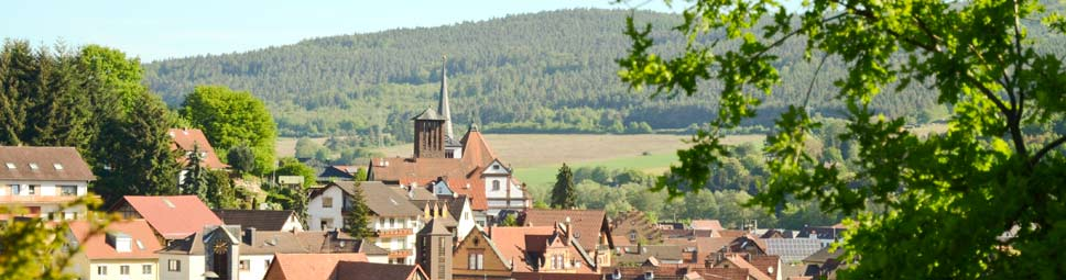 Blick vom Mäusberg hinüber zu den beiden Kirchtürmen von Burgsinn