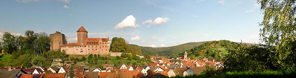 Blick auf die Burg Rieneck aus Richtung Westen