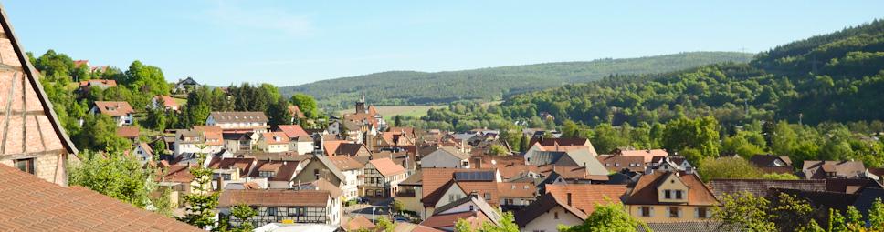 Blick vom Mäusberg auf den Ortskern von Burgsinn