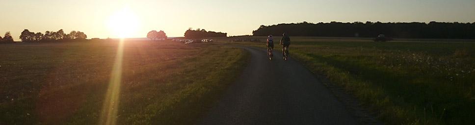 Zwei Radfahrer auf dem Weg durch den Spessart bei Abendsonne