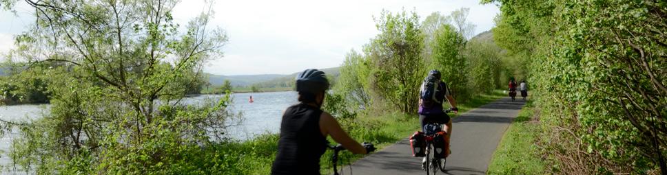 Fahrradfahrer auf dem Maintal-Radweg