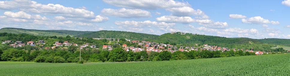 Gössenheim mit der Burgruine Homburg