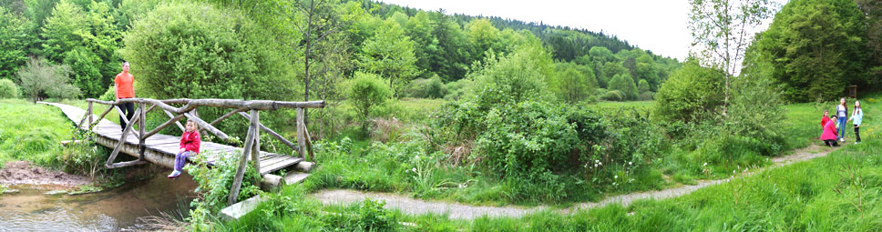 Herrliche Wanderwege im Naturpark Spessart