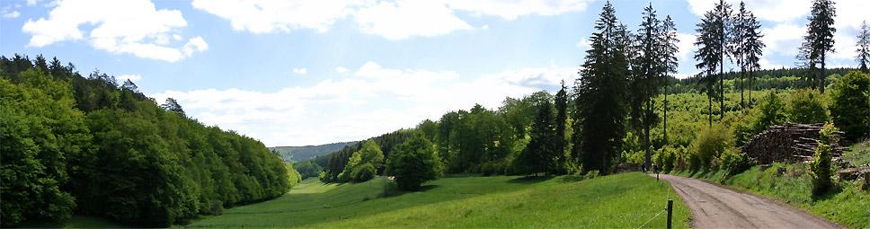 Blick entlang der Obersinnerstraße Richtung Heiligkreuz