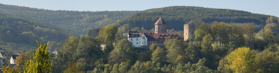 Blick auf Burg Rieneck
