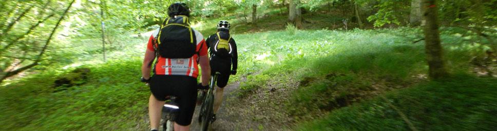 Mountainbiker befahren einen Singletrail im Spessart