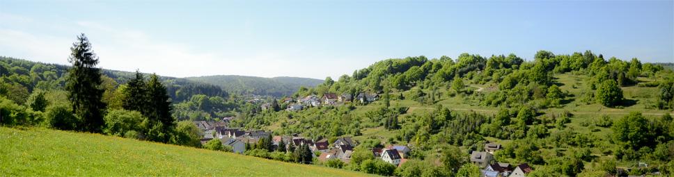 Panoramablick über Rieneck mit dem Herrgottsberg