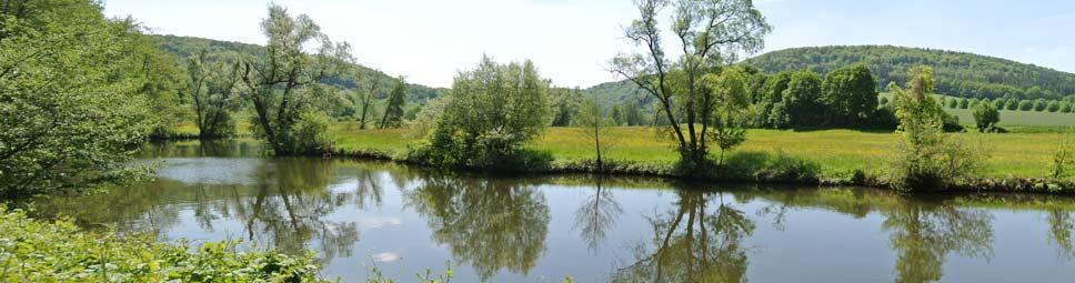 Blick über die Wasseroberfläche der Fränkischen Saale