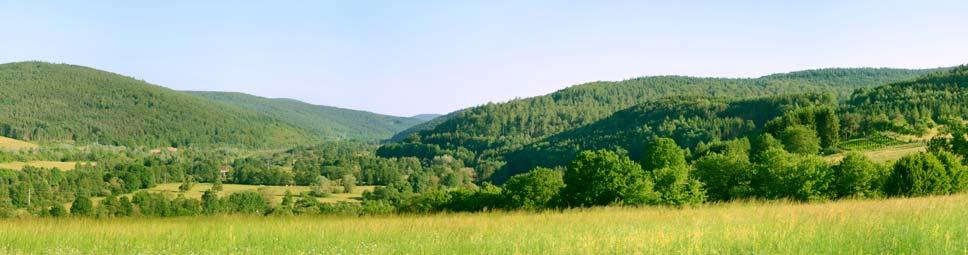 Panoramablick über Wiesen und Hügel im Sinngrund