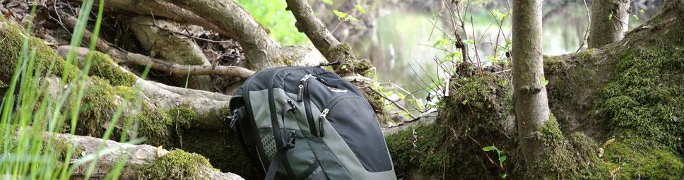 Wandern - rein in die Natur des Spessarts