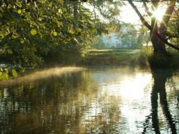 Morgenstimmung am Fluss