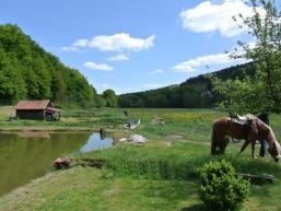 Fischteiche und Wiesen mitten im Ort von Heiligkreuz