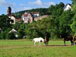Stadt Rieneck vom Sinngrund gesehen