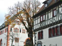 Rathaus von Steinau an der Straße