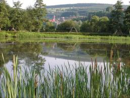 Der Parksee in Rieneck