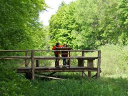 Kinder auf dem Steg des Wald- und Wassererlebnispfades von Rieneck