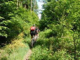 Im Sindersbachtal biken