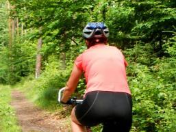 Schöne Mountainbikewege führen durch den Spessart