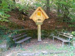 Wandern im Spessartwald