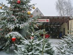 Erstes Christbaumdorf Deutschlands - im Herzen des Spessarts