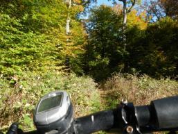 Fahraktiver Trail von der Bettlersruhe beginnend