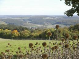 Immer wieder schöne Ausblicke am Sodenberg