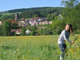 Blick von den Sinnwiesen auf die Altstadt von Rieneck