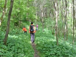 Wald- und Wasserlehrpfad