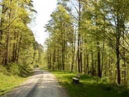 Wandern durch Wald und Flur