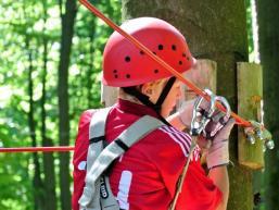 Sicheres Klettern von Baum zu Baum