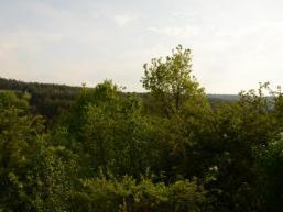 Das Fließenbachtal im Spessart