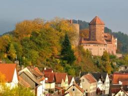 Blick auf die Burg Rieneck