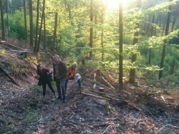 Quer durch den Rienecker Forst