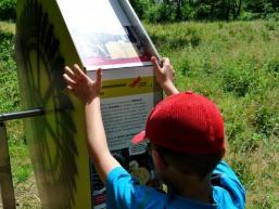Interaktive Erlebnisstationen auf dem Feuchtwiesenpfad