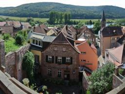Ausblick aus dem Ronkarzgarten