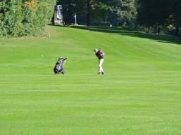 Golfsport in lieblicher Natur