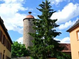 Stadtmauerturm mit Storchennest
