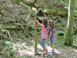 Rätzelraten für Kinder auf dem Waldpfad im Spessart