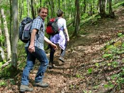 Wanderpfad zur Burgruine Homburg