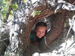 Kinderglück im Wald
