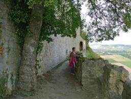 Aussicht über Karlstadt am Main