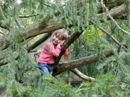 Burggelände der Karlsburg ideal für Kinder