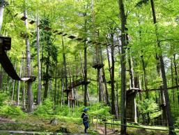 Hochseilgarten im Spessartwald