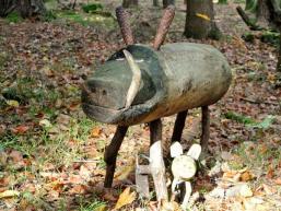 Waldbewohner des Märchenwaldes im Spessart