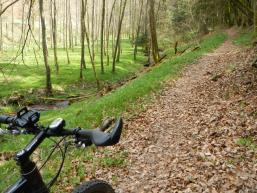 Biker auf dem Wasser- und Walderlebnispfad
