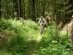 Gegenverkehr auf manchen Trails
