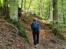 Nonnenpfad mit Wander:in