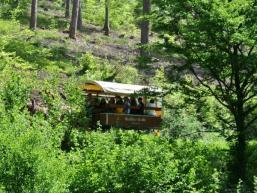Entführt mit dem Planwagen in die Wälder