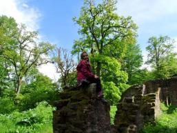 Mauerreste der Burganlage Schönrain